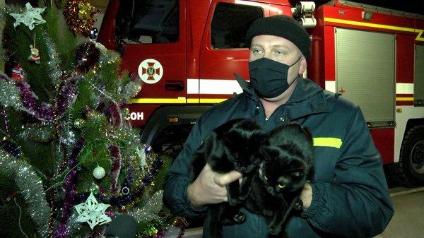 Пожарная часть в Херсоне, фото: скриншот из видео
