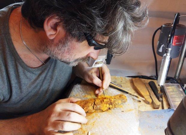 Ели еще в мезолите: самые древние продукты, без которых сложно представить нашу жизнь