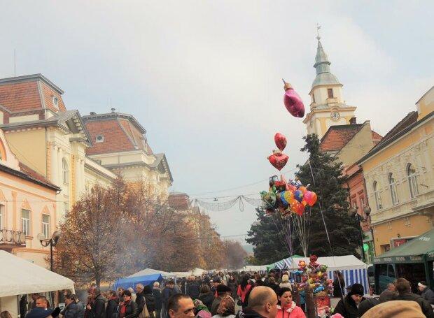 Фестиваль, Закарпаття онлайн