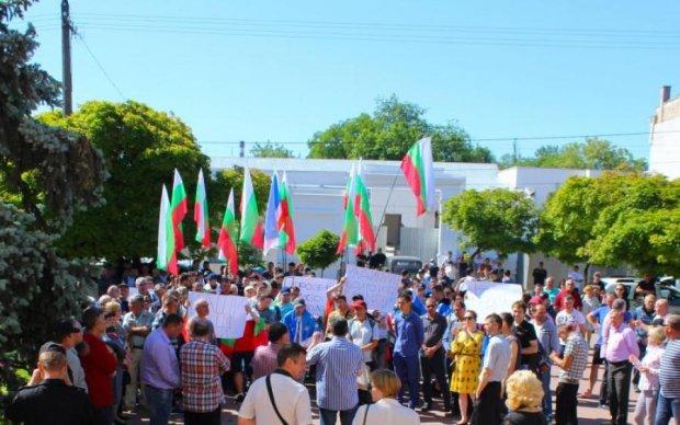 Шатун на Одесчине: болгар обвинили в пособничестве Кремлю