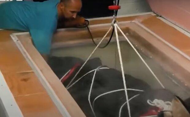 Замораживание тел, кадр из видео