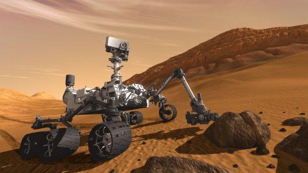 Марсіанський рептилоїд потрапив в об'єктив NASA