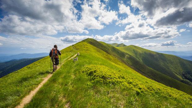 Вершина Робін Гуда: у Карпатах причаїлося легендарне місце, час пакувати рюкзаки