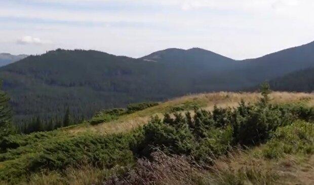 Карпати, кадр з відео, зображення ілюстративне: YouTube