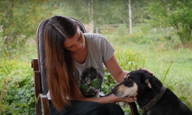 собака, скриншот из видео