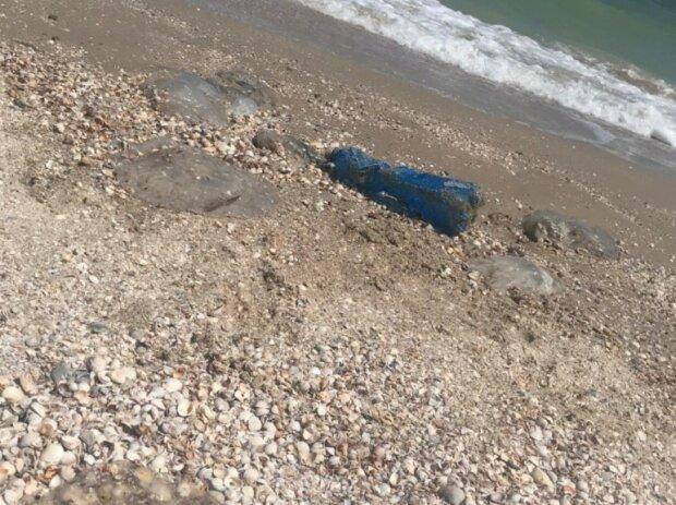 Туристов на Азовском море атакуют кусачие твари, и это не медузы — жалят прямо в воде
