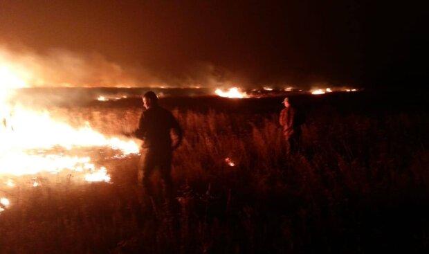 Пожежі на Луганщині, фото: facebook.com/pressjfo.news