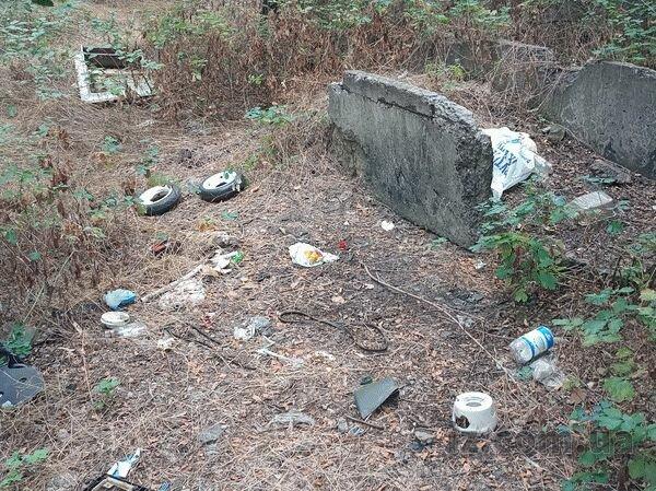 Центр Запорожья забомбили бутылками и огрызками арбузов - вонь и грязь посреди города