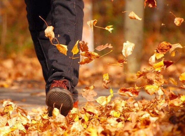 Зима даст заднюю: какой будет погода в Харькове 27 ноября
