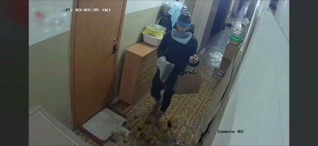 Грабители, фото: скриншот из видео