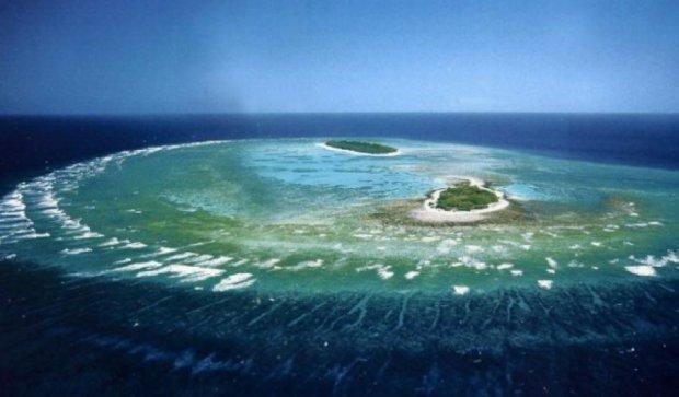 Великий Бар'єрний риф охоронятимуть роботи