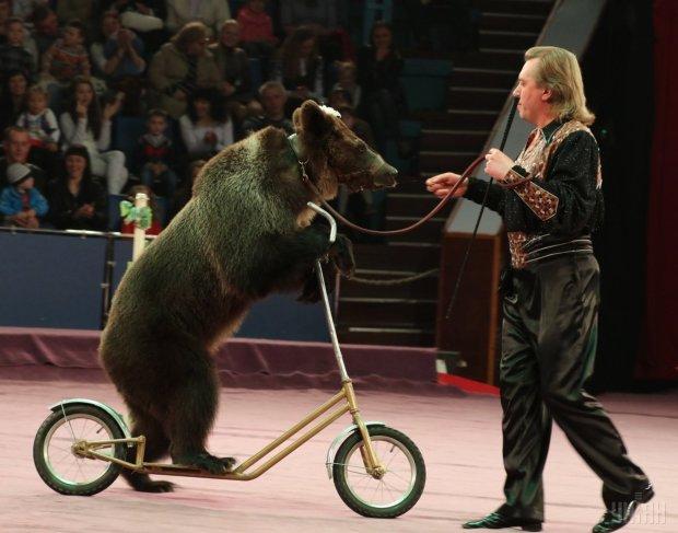 В  США запретили цирковые номера с животными