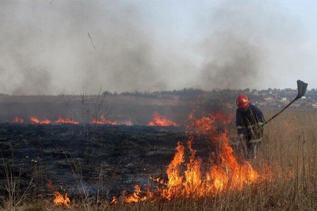 Пожар, фото: ГСЧС