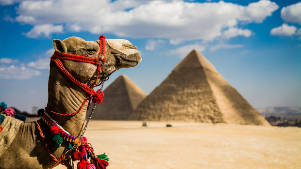 В Єгипті знайшли найдавніше кладовище з уцілілими надгробками