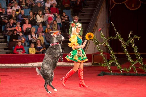 Харків'яни повстали проти знущань над тваринами: цирку не буде