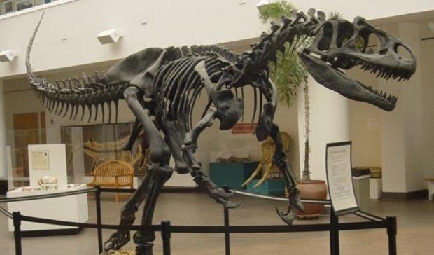 Британці продають скелет динозавра