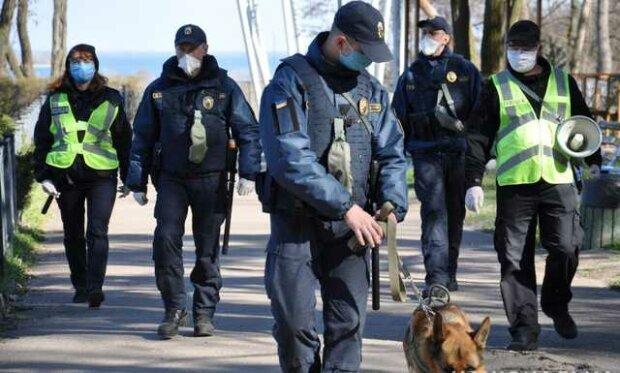 Главное за день вторника, 7 апреля: дети в худших условиях, чем собаки и кто зарабатывает на панике украинцев