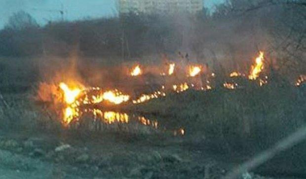 В Ирпене шашлыки на 8 марта закончились поджогом торфяников