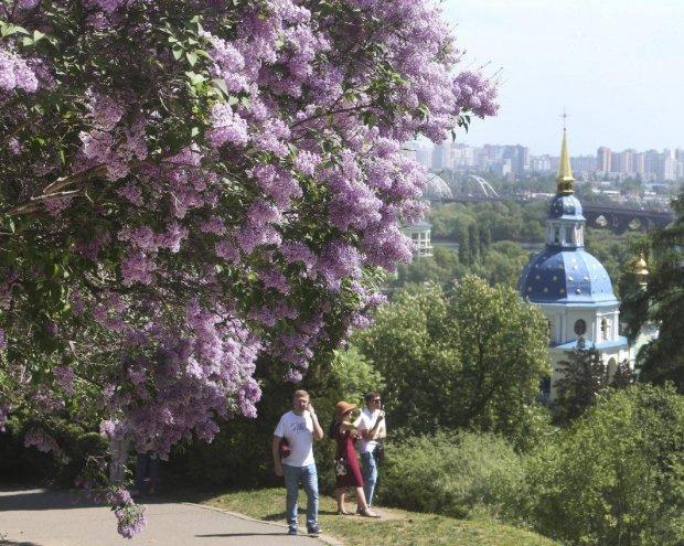 Погода в Киеве на 23 июня: жара готовит новый удар, одевайте панамки