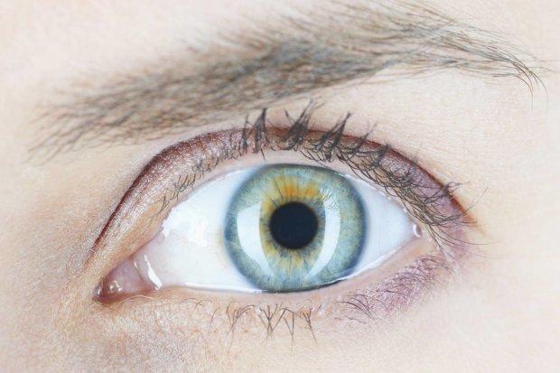 Лінзи з шипами: з'явився незвичайний спосіб лікування очних захворювань