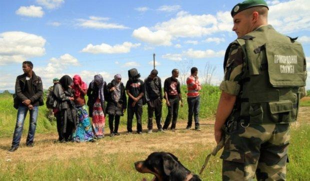 Азіатські нелегали потрапляють в ЄС через Україну