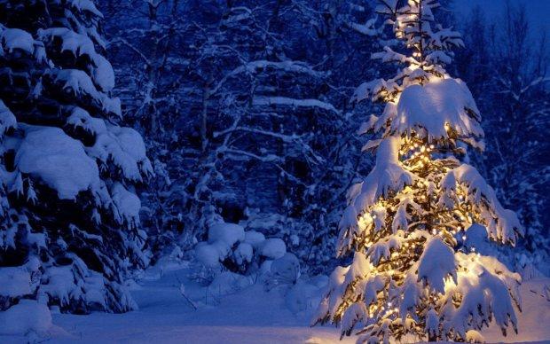 Новогодние приметы на Святого Николая