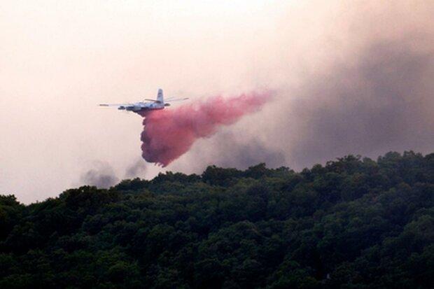 Трагедія в Росії: після жорсткої посадки літак спалахнув, наче факел, не вижив ніхто