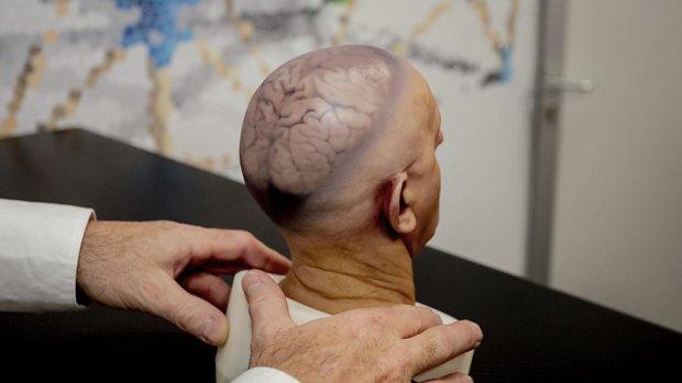 Ученые замедлили старение мозга, бессмертие стало реальностью
