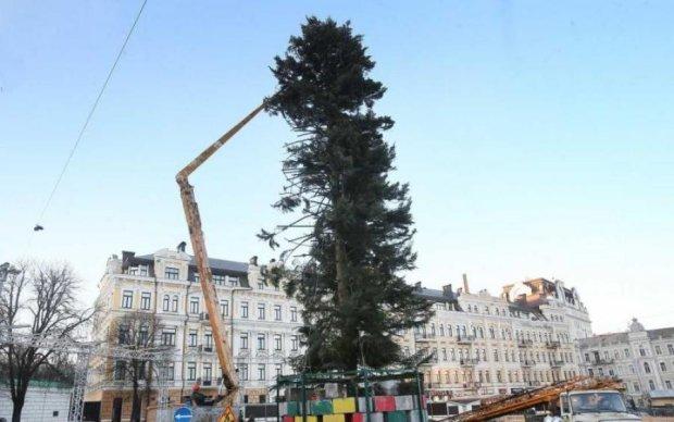 Очередной провал: известна причина облысения главной елки страны