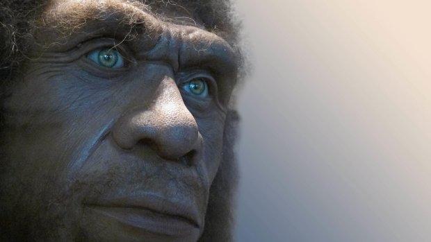 Ученые выяснили, как неандертальцы пережили Ледниковый период
