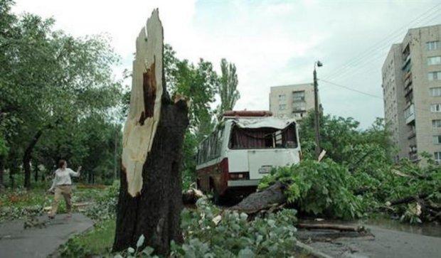 Штормовое предупреждение объявили в Киеве