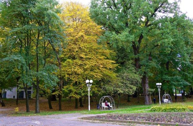 Вінниця, парк, декоративне фото