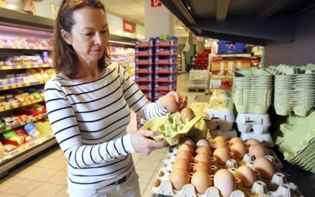 Токсичные яйца угрожают здоровью жителей 17 стран