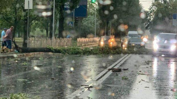 Кияни, тримайтесь: на столицю насувається ураган, синоптики б'ють на сполох