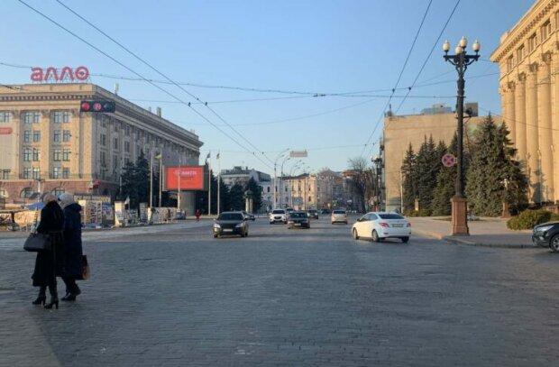 Харьковчане с бензопилами сделали то, что не успел Кернес