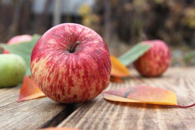 Яблоки, фото pixabay