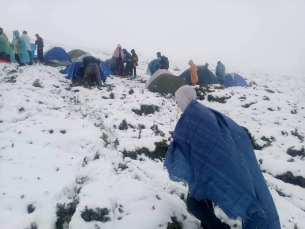 Лютая зима пришла в Украину: улицы засыпает густым снегом, фото