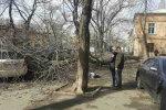 в Одесі дерево вбило жінку, фото: dumskaya