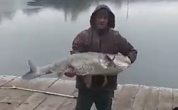 Богдан Литвицкий, кадр из видео: YouTube