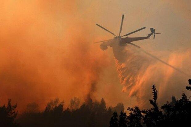 Підпалила через помсту: ліс під Чорнобилем палає третій день, замішана жінка