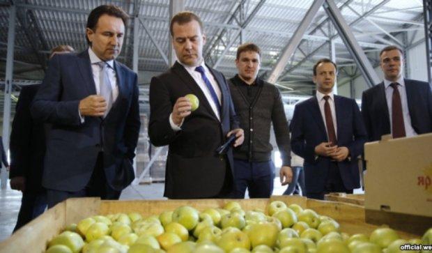 В России нет дефицита продуктов - Медведев