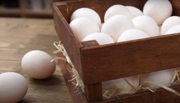 куриные яйца, скриншот из видео