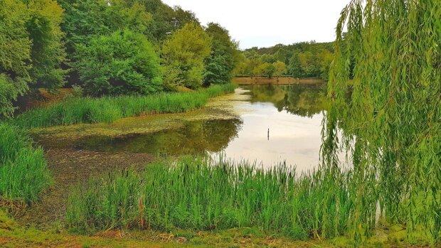 Улюблений парк киян перетворився на фільм жахів: посеред озера сплив труп