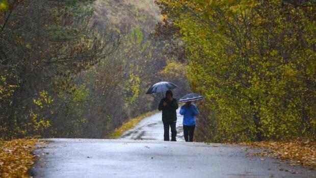 Франковск превратится в город мокрых ног: какие испытания готовит стихия 28 октября