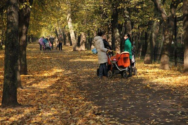 Солнце уйдет, хлопнув дверью: прогноз погоды в Киеве на 22 октября