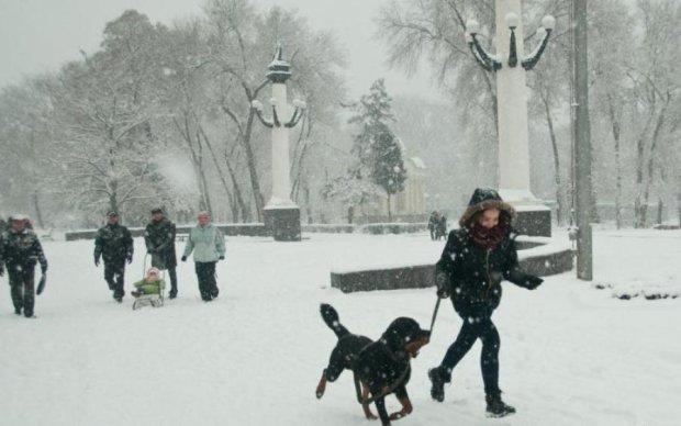 Стихія лютує: 17 українців опинилися у сніговій пастці