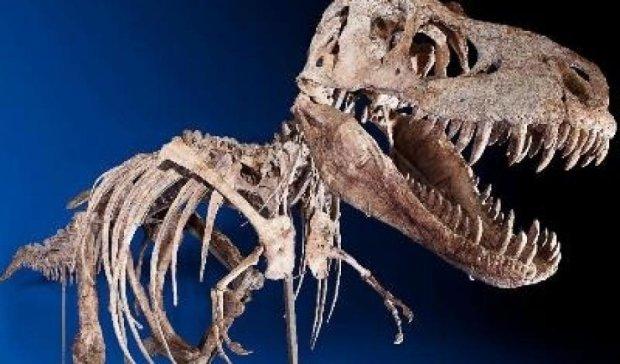 Скелет динозавра продадут за миллион долларов