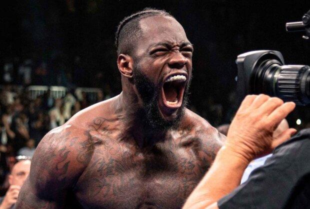 """WBC отримала нового чемпіона світу: """"Вирубив з удару"""", відео"""