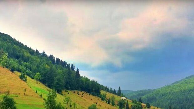 Карпаты, скриншот из видео