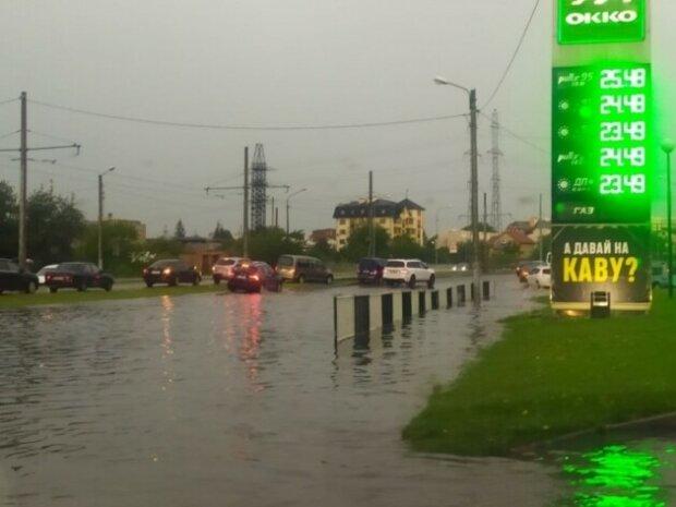 Зламані дерева та побиті машини - Львів пішов під воду після несамовитої грози